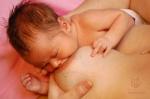 Postupnosť, ako sa bábätko prisáva na prsník - 3 - brada je zatlačená do prsníka a medzi nosom a prsníkom je medzera, nos sa prsníka nedotýka
