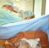Bábätku sa dá umožniť kontakt koža na kožu a dojčenie aj počas zašívania rany po cisárskom reze